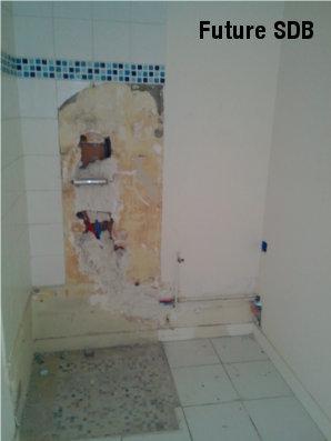 demolition salle de bain